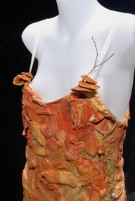 Image: Donna Franklin, Fibre Reactive 2004-2008, orange bracket fungi (Pyconporus coccineus) silk, organza, perspex, wood. Image © the artist